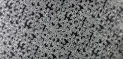 3D-1804